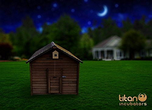 automatische huhn haus t r ffner mit lichtsensor und timer. Black Bedroom Furniture Sets. Home Design Ideas